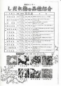 4しだれ梅の品種-JPEG