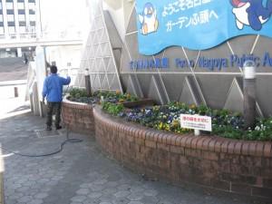ガーデン替 011