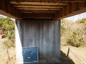 RIMG3487