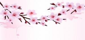 クリップアート桜
