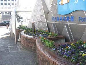 ガーデン替 015
