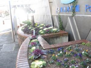 ガーデン植替 018