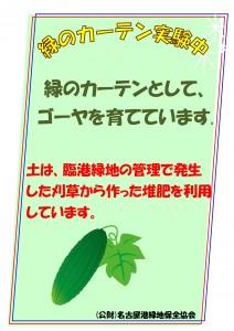 緑のカーテンJPEG